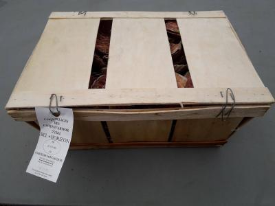 Coquilles Saint Jacques bourriche de 10 Kg - 4.2€/kg (soit environ 42€/kg noix de St Jacques) + 2€ bourriche