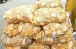 Coquilles Saint Jacques sac de 25 Kg - 3.2€/kg (soit environ 32€/kg noix de St Jacques)